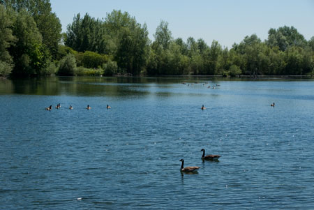 20100603_Thrupp_Lake_IGP2276_450