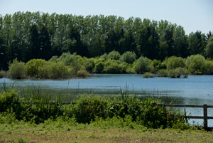 20100603_Thrupp_Lake_IGP2317