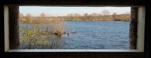 20110314_Thrupp_Lake-from_bird_hide
