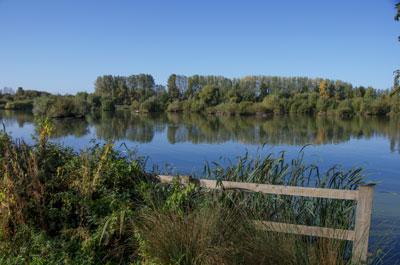 20121004_Thrupp_Lake_K5_2883