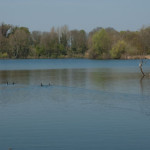 Thrupp_Lake_20100423_IGP2193_450