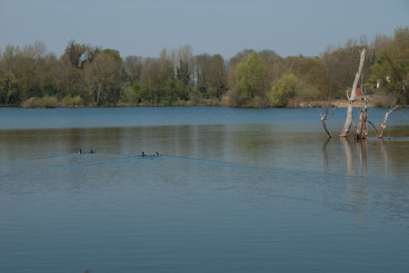 Thrupp_Lake_20100423_IGP2193_450