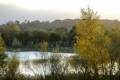 20051113_Orchard_Lake_IGP1581