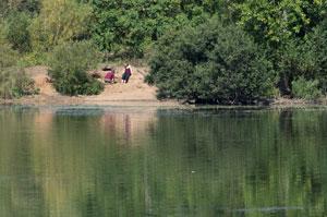20130905_Thrupp_Lake_K5S0436