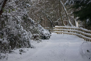 20101219_snowy_byway_K5_0079