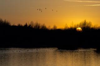 20110109_sunset_Thrupp_Lake_K5_0189