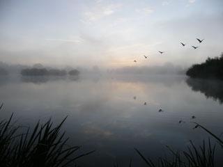 20110822_Thrupp_Lake_Dawn_DSCF7224