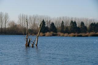 Radley_Lakes_K200037