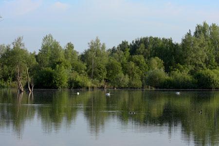 Thrupp_Lake_24_05_2009_IMG_3370_450