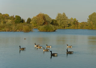 Thrupp_Lake_IGP1523c