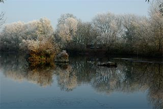 Thrupp_Lake_IGP1695