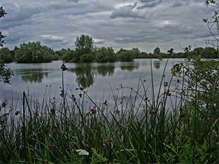 Thrupp_Lake_IMGP0172