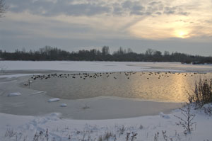 frozen_lake_20101219_K5_0081