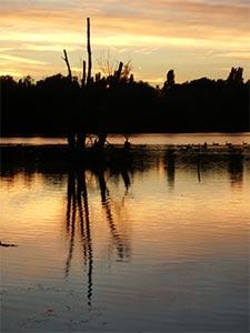 sunset_IMGP0456