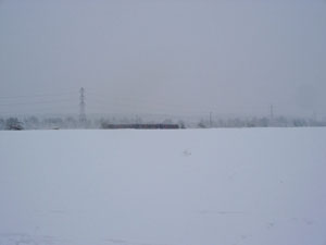 train_across_fields