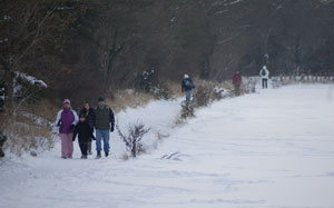 winter_walkers_20101219_K5_0071