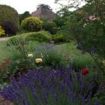 Best garden